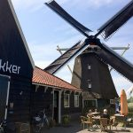Molen De Otter in Oterleek