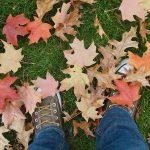 schoenen en herfstbladeren